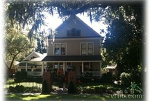 Home in DeLand / Raised here and finally moved back and just love it here! / by Carolyn Linder