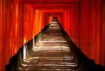 shrine & temple / 日本の神社仏閣