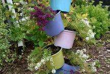 Hauskat puutarha jutut