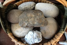 ROCKS AND FOSSILS..and SHELLS / by Nancy Grenda