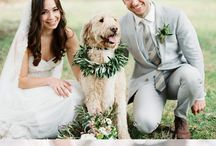 Super Cute Wedding Photos