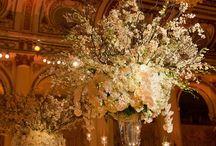 Dream wedding / Absolute Dream Wedding