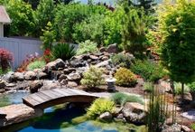 Jardins et bassins
