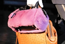 handbags-of-paris-fall-2012-fashion-week / by goldenwont Dorothy