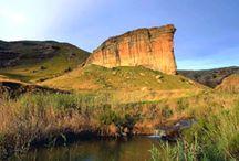 Suid-Afrika!