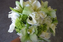 Casi's wedding / by Melissa Freeman Cunningham