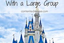 Disney: Best Trip Tips Edition / Disney Vacation Tips & Tricks! Find magical inspirations for your next journey to see The Mouse! To be added as a pinner: please follow me and comment, LoveDisney, on a pin in this board.