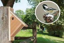 Birdhause