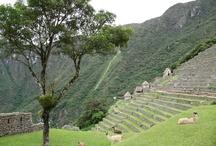 Machu Picchu Holidays /  Machu Picchu Holidays, Machu Picchu Travel, train to Machu Picchu, Machu Picchu tours, inca trail, salkantay machu picchu trek