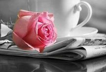 ✿ Pink + Grey / by Nataly Maximova