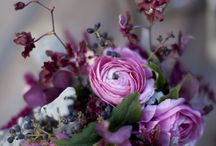 wedding flowers / by Holly Woosey