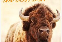 bison & bourbon / friday, august 28, 2015   join us! learn more at; www.kitchentablegv.com
