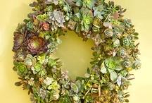 Wreaths / by Eva Ratliff