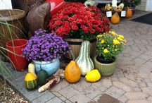 FALL TIME / Spruce up your yard, porch, and patio for fall