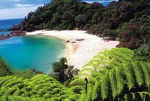 New Zealand inspo