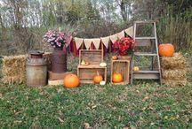 Fall minisessions ideas