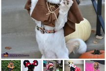 Halloween Dogs / Dogs in Costumes / by Jones Chews