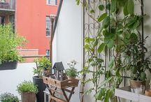 zöldellő erkély