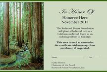 "Plant a Redwood for Any Occasion / Plant a Redwood to commemorate any occasion. The Redwood Forest Foundation will plant young redwood trees in your honor, or in honor of a friend or loved one, in a redwood forest in northern California's Redwood region. The Honoree receives an attractive 8"" by 11"" certificate suitable for framing with a customized message acknowledging you as the donor. Your gift supports RFFI's redwood reforestation program. Questions? Please email morgan@rffi.org."