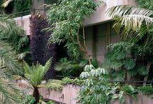 Gardenhood Gardens / Our members Gardens