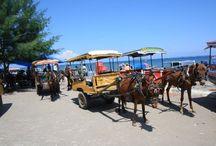 Pulau Lombok, Indonesia / wisata untuk berlibur