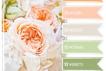 Color Crush / Color inspiration for my graphic and theme design projects