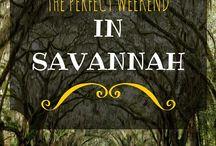 Things to do in Savannah/Tybee Island / Kid- Friendly activities for families in Savannah, GA
