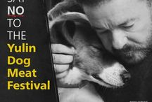 Say NO to the Yulin Festival