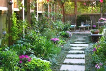 Gardening and yard features