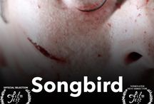 """Songbird / http://songbirdthemovie.com  A troubled street musician finds a magic camera that ends his loneliness while opening a door to his darker side.  Helen BaldwinDirector Howard Kingkade Writer Helen Baldwin Writer Howard Kingkade Producer Jonathan Benton Key Cast as """"Raymond"""""""