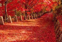 Stunning sceneries