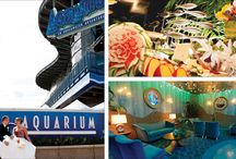 Aquarium Wedding Inspirations / Ideas for an Aquarium Inspired Wedding