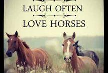 Horses / by Mackenzie Erb
