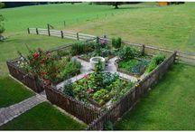 Gartenvorstellung