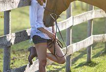 Equestrian Photography / Equestrian Photography