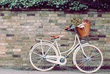 Le romantisme des vélos / Inspired bicycle