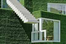 Mood Board Sustainability / To develop design concepts