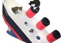 For cats - Pour les chats / www.pasbetes.com