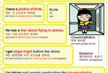 korean / vocabulary