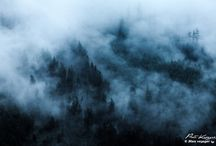 Brumes et brouillards