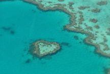 Luoghi da non perdere / Heath reef