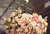 Flowers! / Flowers