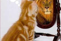 My MasterKey Journey / Highlights from my MasterKey Experience Journey.  Read all about it at http://sandraowencreative.com/master-key