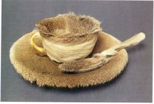 Y10 Fusion - Meret Oppenheim, Fur Cup