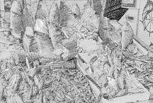 Balıkçı Hasan fish reyon