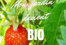 Le Jardin d'Ecolo-bio-nature (Isabelle Brunet) / Venez visiter mon garde-manger, en permaculture et 100 % naturel !