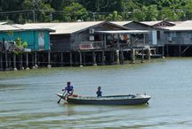 Kinabatangan / It was wonderful to sail down Kinabatangan river