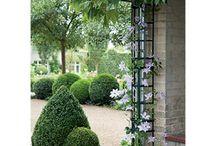 Gardening - Trellis and Art