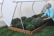GARDEN: veggies and fruit; structures and growing tips / by Tina Rawlins Mihu