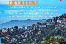 Darjeeling Tour packages / Shah Tours - Travel Agent in Siliguri specializes in a wide range of customized and fixed departure holiday options for Siliguri,Sikkim, Darjeeling and Bhutan. West Bengal, India
